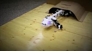 未来感ハンパない!! サンショウウオ型ロボット!