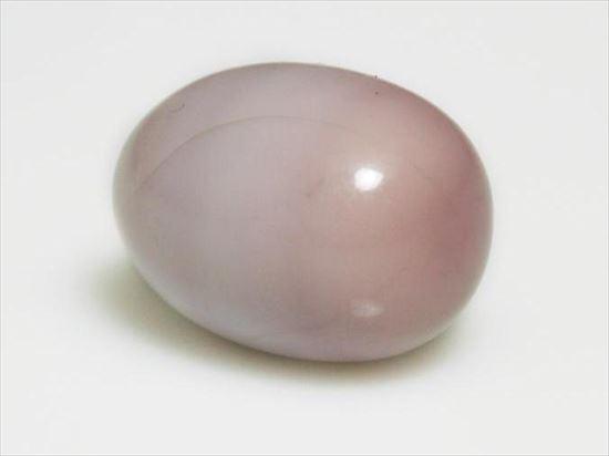 真珠,ハマグリ