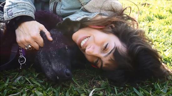 瀕死の犬ビリー