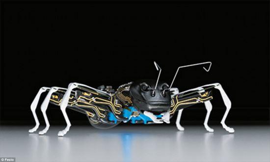 ロボット,昆虫,アリ,蝶,バタフライ,蟻