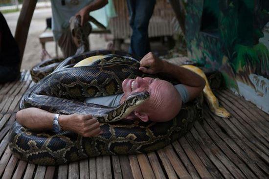 フィリピンのセブ島にある動物園で受けられるヘビマッサージ