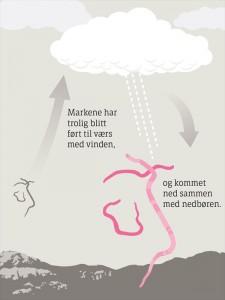 怪現象! ノルウェーで、空から大量のミミズが降りそそぐ現象が発生!