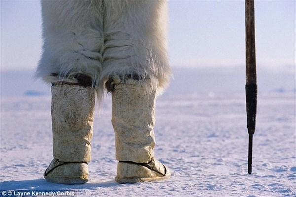 130年前のイヌイットの女性は、毛皮のTバックを履いていた!