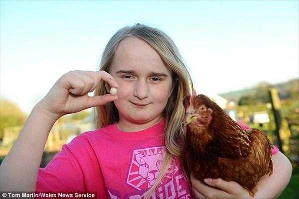 世界最小のニワトリの卵!? 12歳の女の子が見つけた1.9センチの卵!