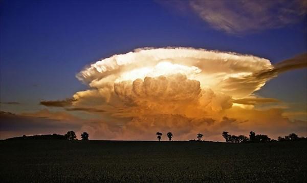 雲!雲!雲! クジラや犬、鳥に見える奇跡の雲写真13枚!