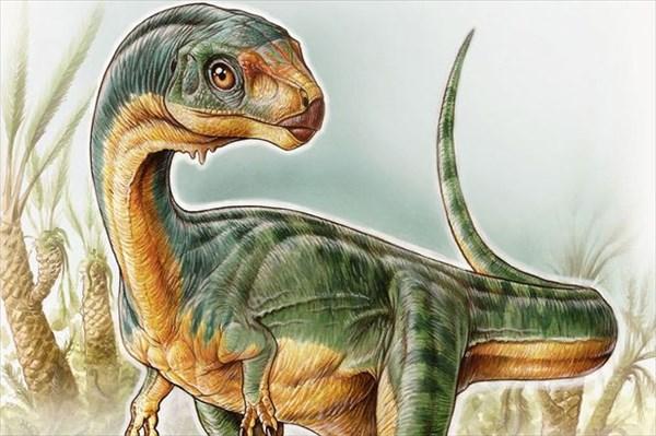 肉食ぽいけど実は草食 新たに発見されたチリサウルス!しかも発見者は7歳少年