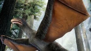 コウモリのような翼を持つ恐竜!? 中国で発見された羽毛恐竜の化石