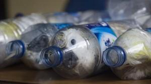 残酷すぎる! ペットボトルにオウムを入れて輸送する最新の密輸方法!