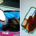 税関で密輸を発見! スーツケースの中から出てきたのは8歳の少年!