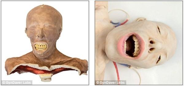 リアル!そして動く! 外科医の練習用に作られた合成死体が気持ち悪い!