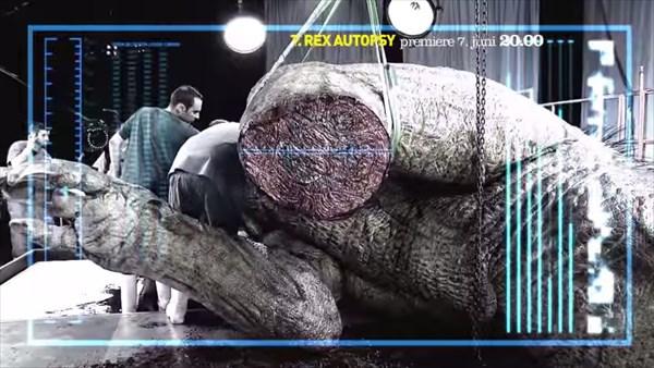 やる意味あるの? 等身大レプリカによるティラノサウルス解剖シミュレーション