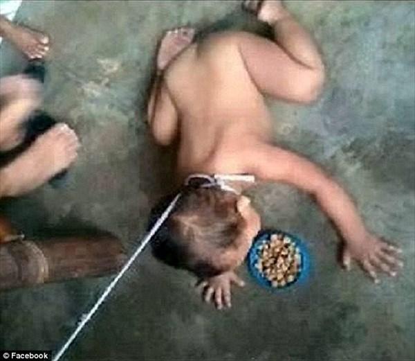 最低行為! 子供に首輪をつけドッグフードを食べさた母親 SNSの画像で発覚