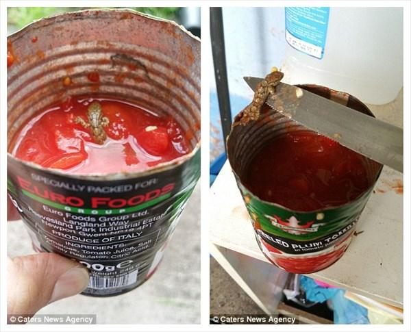 異物混入! スーパーで購入したトマト缶の中から死んだトカゲが…