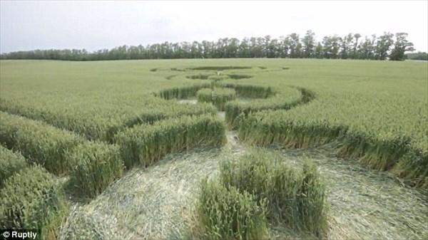 ドローンで撮影!! ロシアの麦畑にあらわれたミステリーサークル!