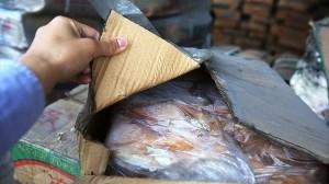40年前の肉!? 中国で「ゾンビ肉」と呼ばれる肉を密輸していたギャング摘発