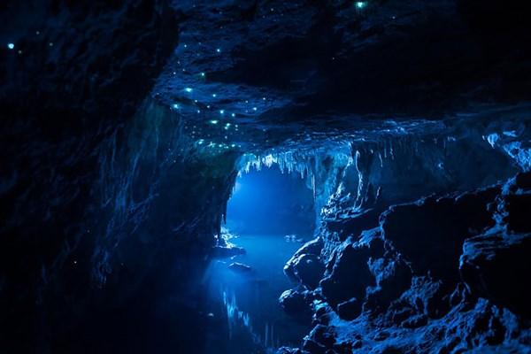 FFチックな洞窟! ツチボタルの生息する洞窟が神秘的な美しさ!!