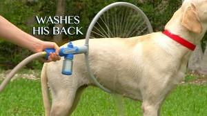 これは便利! 犬を簡単に洗うことができる「ウーフ・ウォッシャー360」!!