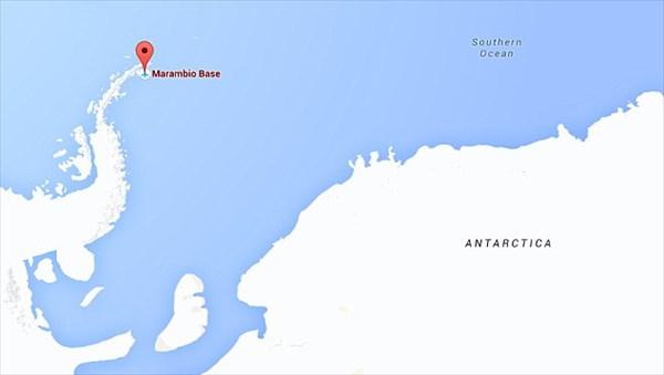 南極で発見! 化石化した5000万年前の世界最古の精子!!