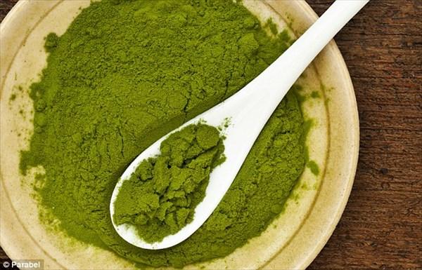 未来の食品!? 大豆よりも高タンパクで大量生産可能なウキクサ(浮草)!