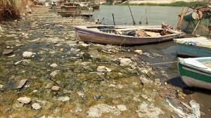 気温52度! 川が干上がる! 日本の比にならない、イラクの猛暑が過酷すぎる