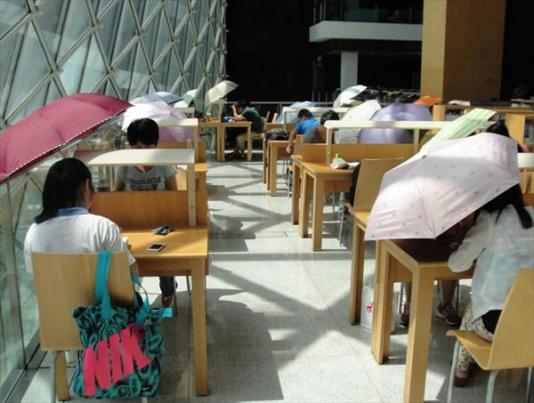 日当たりが良すぎるのも考え物!? 日差しが強すぎて日傘必須な図書館