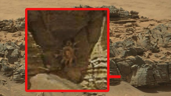 UFO Sightings Giant Crab Seen On Mars UFO Sightings