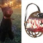 可愛い飼い犬を、ゾンビ犬に変身させる口輪が怖い!