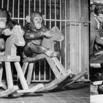 約100年前のデンマークの動物園を撮影した白黒写真!!