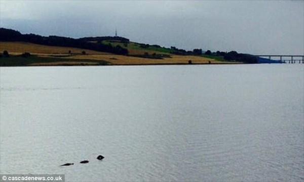ネス湖から240キロ離れた川で、ネッシーのような未確認生物が現れる!!