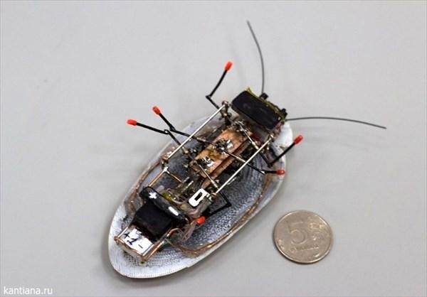 ロシア軍も注目! ロシアのエンジニアがゴキブリ型偵察ロボットを開発!!