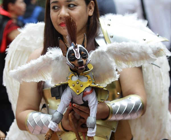 ペットだってハロウィン? フィリピンで開催されたアニマルファッションショー
