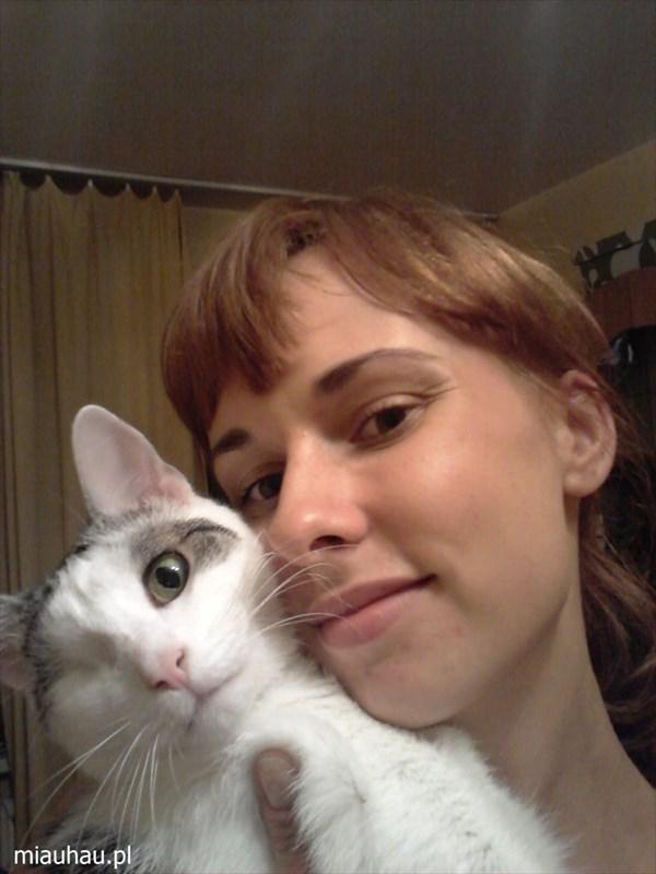 独眼猫のパイレーツ 海賊と呼ばれるネコが回復するまで!