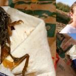 マクドナルドのチキンを食べていたらコリッした食感 その正体は死んだカエル!
