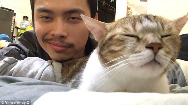驚異のシンクロ率! 飼い主とともに音楽に合わせてリズムをとる陽気な猫の動画