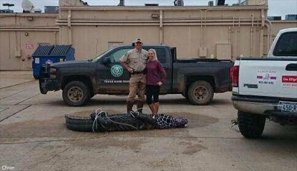 ショッピングモールの駐車場に400キロ越えのワニ出現! 二人がかりの大捕物