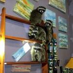 アライグマが美術品窃盗!? オレゴン州でアライグマ窃盗団を現行犯逮捕!