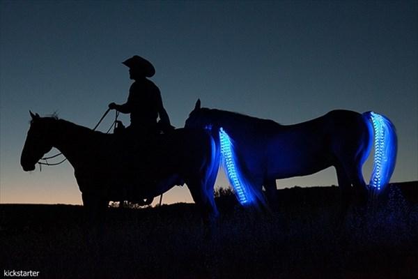 夜の乗馬もこれで安心? 馬用の安全灯「テール・ライト・ライダー・システム」