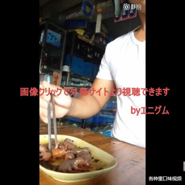 ネズミの赤ちゃんを生きたまま踊り食いするという中国の珍味「三聴」