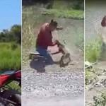 バイクにオシッコをしたサル 所有者が注意したら人間対サルの異種格闘技へ発展