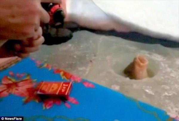 氷に穴を開けてワカサギ釣りをしていたら、まさかの鯉が釣れる!