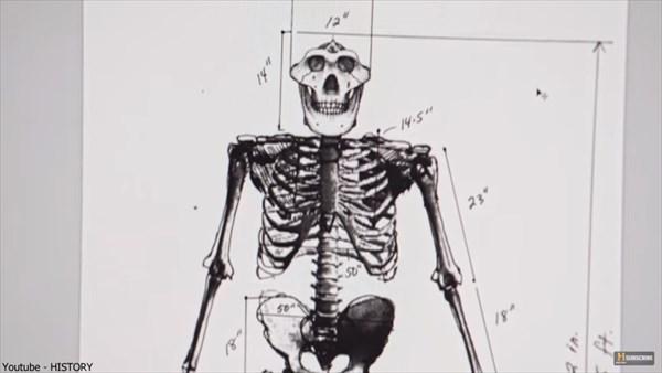 3Dプリンターでビッグフットの等身大骨格モデル製作!パターソンフィルムから