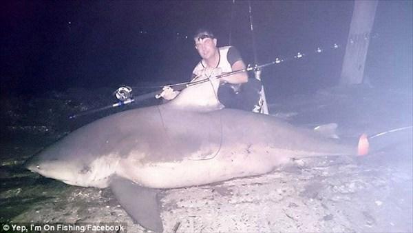 川で魚釣りをしていたら、まさかの巨大ザメ(オオメジロザメ)が釣り上がる!