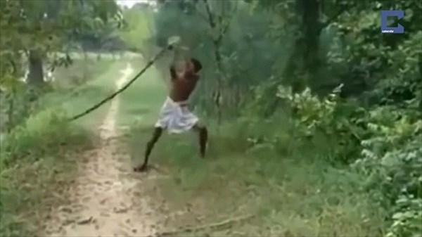 キングコブラに息子を殺されたインドの父親 コブラをブンブン振り回して報復!