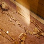最古のトランスジェンダー? 二千年前のローマの女性、DNA鑑定で男性と判明