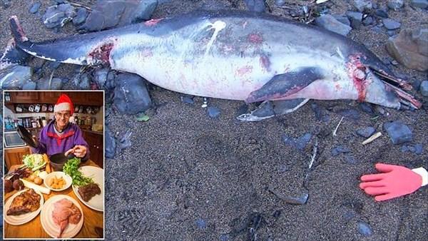 何でも食べちゃうアーサーさん 海岸で死んでいたイルカをクリスマスディナーに