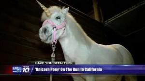 カリフォルニア州で伝説のUMAユニコーンが捕獲される?