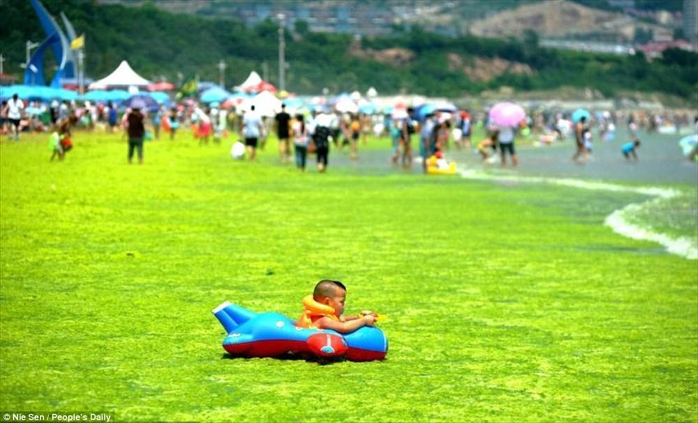 海の日!でも中国のビーチは今年も藻が大量発生!子どもたちも呆然