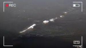 アラスカの川で政府職員が目撃! 水面を泳ぐシーサーペントらしきUMAの正体