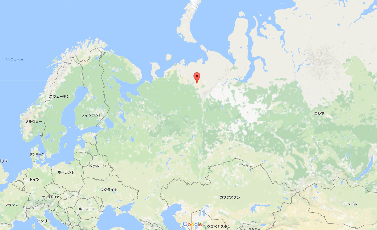 バイオハザードの前兆か ロシアの街に現れた「ゾンビフォックス」に住民震撼