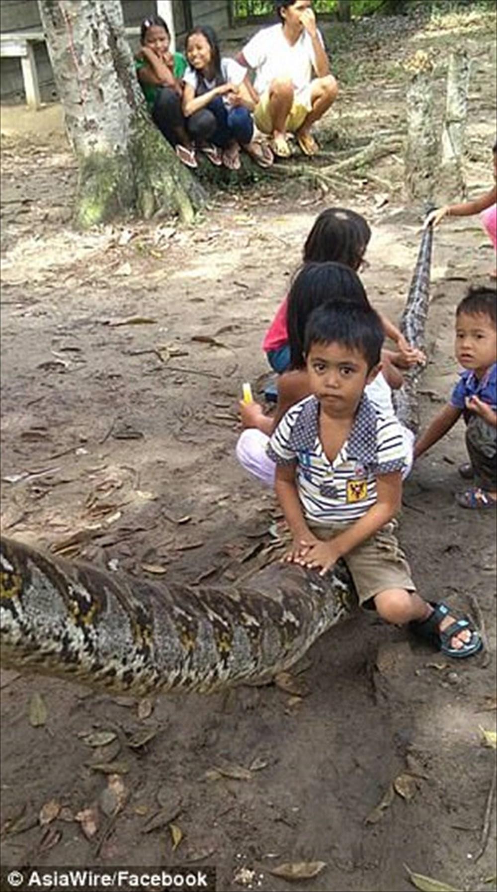 7mの大蛇を食おうとしたインドネシアの37歳男性、逆に左腕を持っていかれる